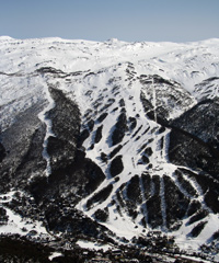 Thredbo Snow Report